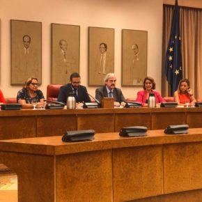 Mª Luisa Alonso asume la Vicepresidencia segunda de la Comisión de Exteriores en el Congreso de los Diputados